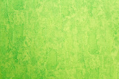 Green vinyl wallpaper Royalty Free Stock Photography
