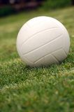 Green volley Royalty Free Stock Photography