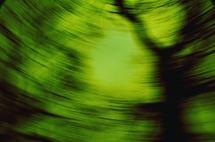 Green vortex Stock Photography