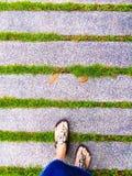Green Walking. Walking walkway walk path grass green Royalty Free Stock Images