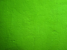 Green wall. Stock Images