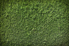 Green wall background Stock Photos