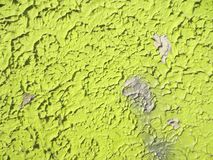 Green wall, background, art royalty free stock photo