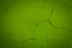 Green wall background or texture Royalty Free Stock Images