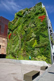 Green wall of the CaixaForum museum, Madrid Royalty Free Stock Photo