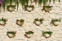 Green wall with flowers Royalty Free Stock Images