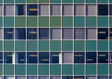 Green wall with windows Stock Photography