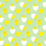 Green wallpaper with yellow chickens  in different poses and eggs. Stock Photo