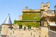 Green walls in Olite Royalty Free Stock Photos