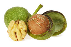 Green walnut, peeled and fresh kernel Royalty Free Stock Photos