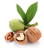 Green walnut; peeled walnut and its kernels. Royalty Free Stock Images