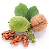 Green walnut; peeled walnut and its kernels. Stock Photos
