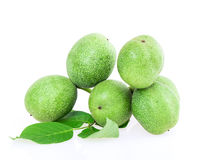 Green walnuts Stock Photos