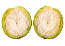 Green walnuts Stock Photography