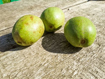 Green walnuts on wood Royalty Free Stock Image