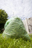 Green waste Stock Image