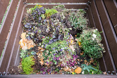 Green waste as compost Royalty Free Stock Image