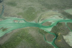 Green water. A view of the north end of Bacalar Lagoon, Mexico Royalty Free Stock Photo