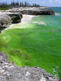 The Green Water Royalty Free Stock Images