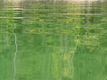 Green water abstraction Royalty Free Stock Photos