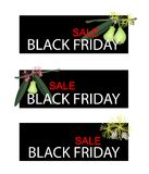 Green Water Apple on Black Friday Sale Banner Stock Photo