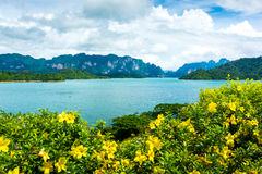Green water dam in Thailand Stock Photo