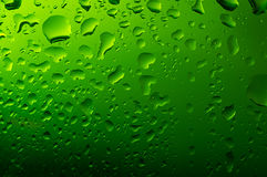 Green water droplets. Water on a green glass background Stock Image