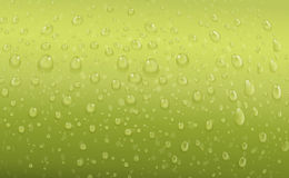 Green water drops Stock Photography
