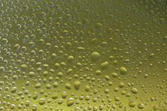 Green water drops background selected focus Stock Image