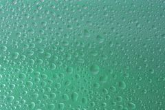 Green water drops background selected focus Royalty Free Stock Photo