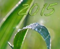 Green 2015 Stock Image