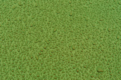 Green water drops on metal car surface. Stock Images