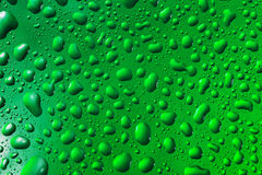 Green water drops Stock Photos