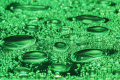 Green water drops Stock Images