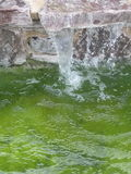 Green water fall Stock Images