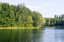 Green water in the lake. background. Royalty Free Stock Image