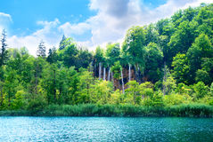 Green water lake Royalty Free Stock Images