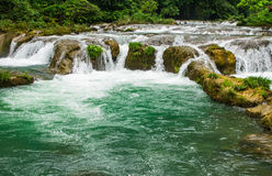 Green water Royalty Free Stock Images