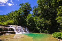 Green water on natural swimming pool Royalty Free Stock Images