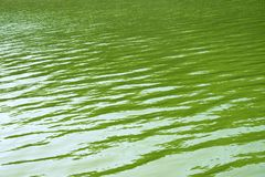 Green Water Pattern of river. Reflection of light royalty free stock image