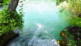 Green water of a river. A river is a natural water course stock video