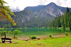 Green water of Tavon lake Stock Photo