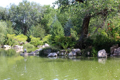 Green Water at the Zoo. Green water reflectss the green of the trees and bushes Royalty Free Stock Photography