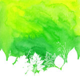 Green watercolor background with white leaves Stock Image