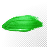 Green watercolor brush abstract stroke. Vector oil paint. Polish smear Stock Photo