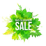Green watercolor foliage Big Summer Sale banner Stock Photos