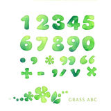 Green watercolor font Royalty Free Stock Image