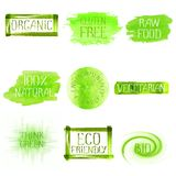 Set of watercolor green logo. Green watercolor logo design template set. Green watercolour hand drawn sign label emblem poster banner set. Eco concept design Royalty Free Stock Photography