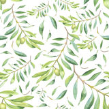 Green watercolor olive branch. Seamless pattern royalty free illustration