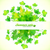 Green watercolor painted clover leaves bouquet Stock Photography